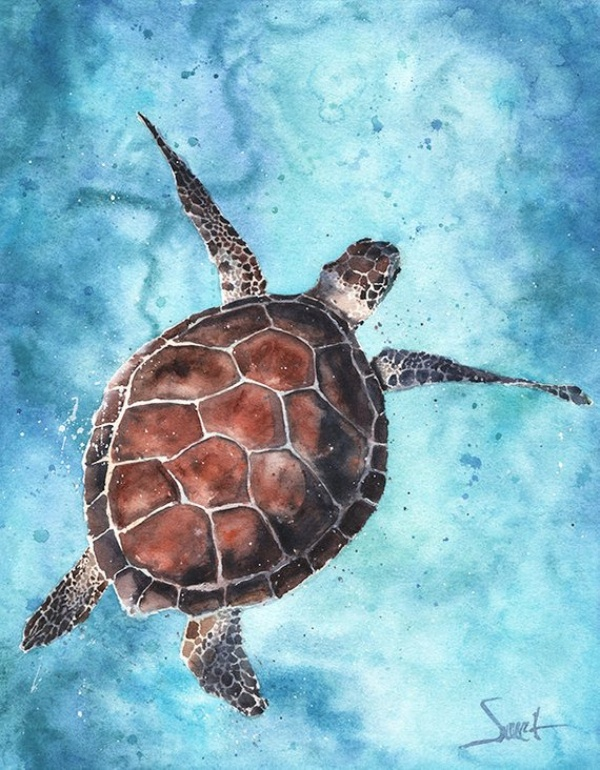 30 Super Cute Animal Watercolor Paintings For Beginners Buzz Hippy